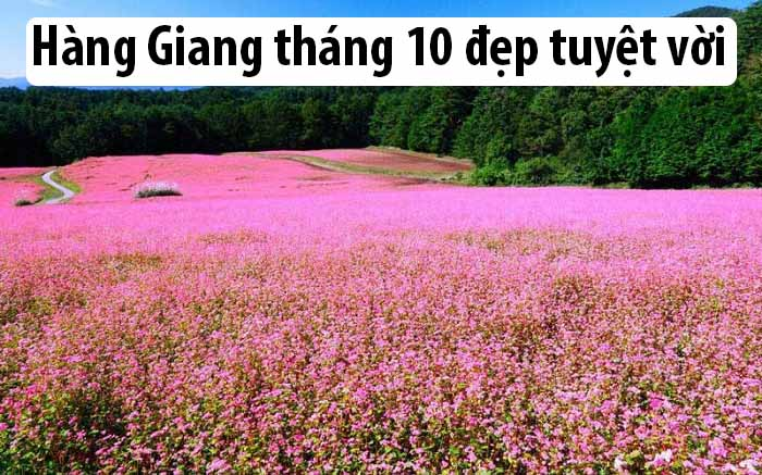 Cạnh đẹp tại Súng là Hà Giang