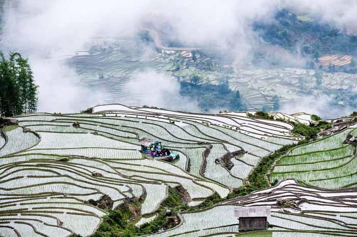 Mùa nước đổ ải cũng là thời điểm giúp bạn thưởng thức được vẻ đẹp khác của Hà Giang