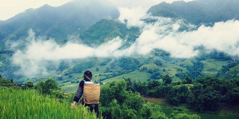 Đi du lịch Sapa để ngắm cảnh vào mùa thu
