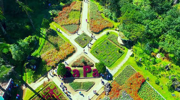 Đừng bỏ lỡ Vườn hoa Hàm Rồng trên bản đồ du lịch Sapa