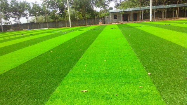 Chuyển cỏ nhân tạo đến sân