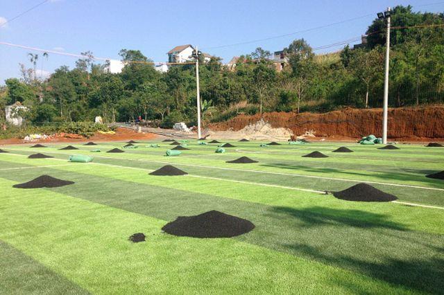 Tiến hành dải hạt cao su trên sân cỏ nhân tạo